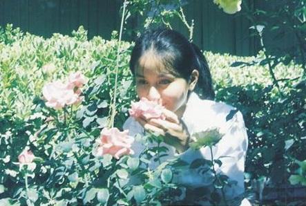ดอกกุหลาบ ที่บ้านพี่เล็ก
